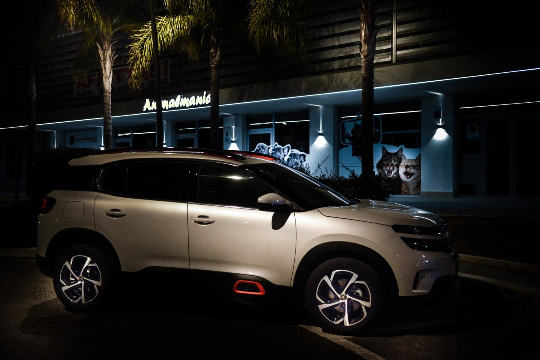 LR5_EDIT-EXPORT_CITROEN-C5-AIRCROSS_overall-41